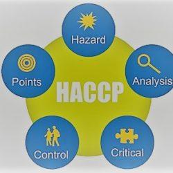 haccp manuale